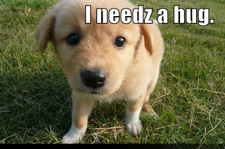 I needz a hug