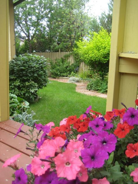 What a pretty Spring garden...