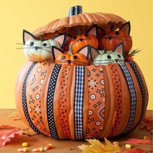 A pretty kitty pumpkin, found at allyou.com