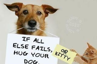 Hug Your Dog, or Kitty